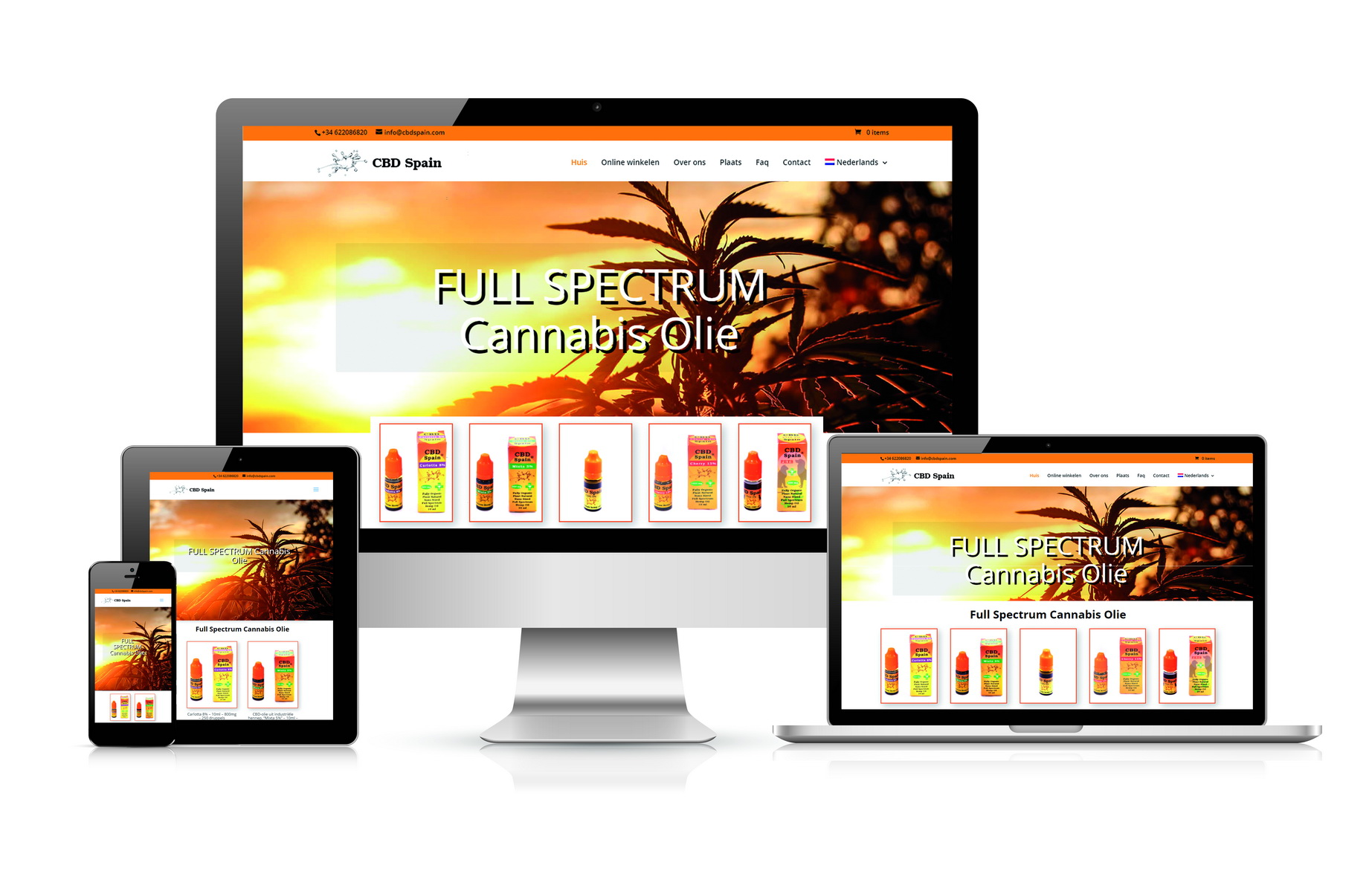 Ecuador web desing